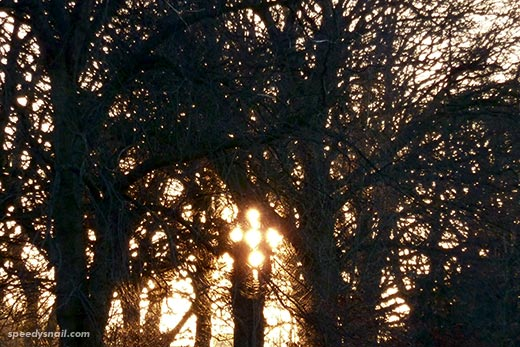 Saughton Park, Edinburgh, 29 December 2014