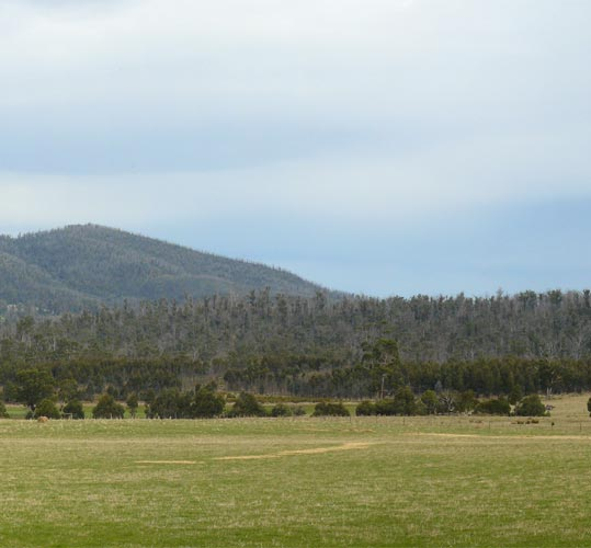 Near Dunalley, Tasmania