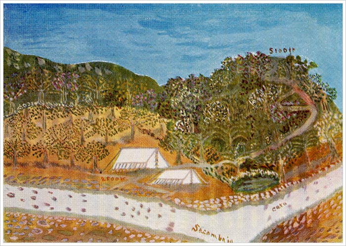 the_camp_at_sacambaja_and_the_caballo_cunco_hill