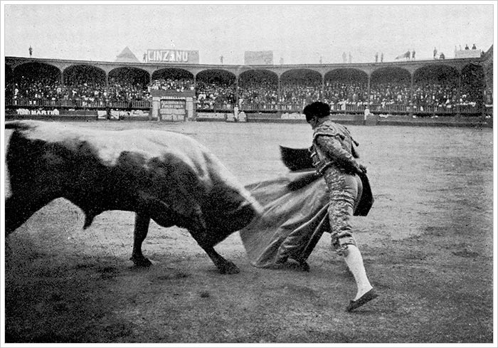 the_bull_fight_at_lima